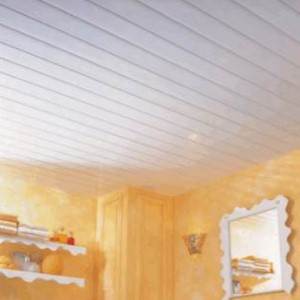 bathroom ceiling tiles pictures