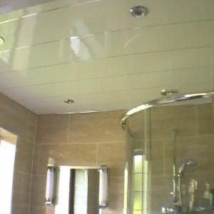 bathroom ceiling tiles guide  kris allen daily, Bathroom decor