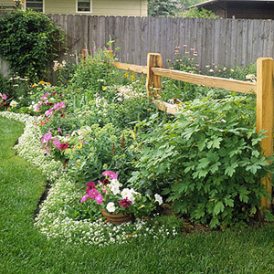 Small Yard Flower Garden Edging Ideas