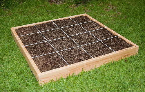 How to start a garden as a part of your house kris for Starter bed