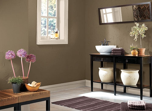 Brown Color Schemes Amusing With Bathroom Paint Color Ideas Images