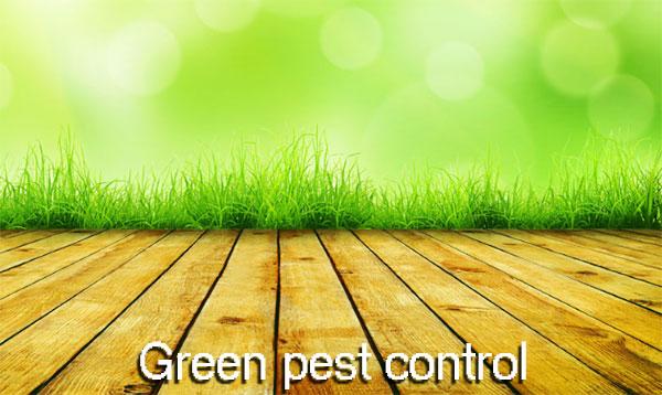 green pest control illustration
