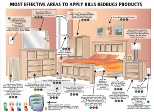 Heat Temp That Kills Bed Bugs